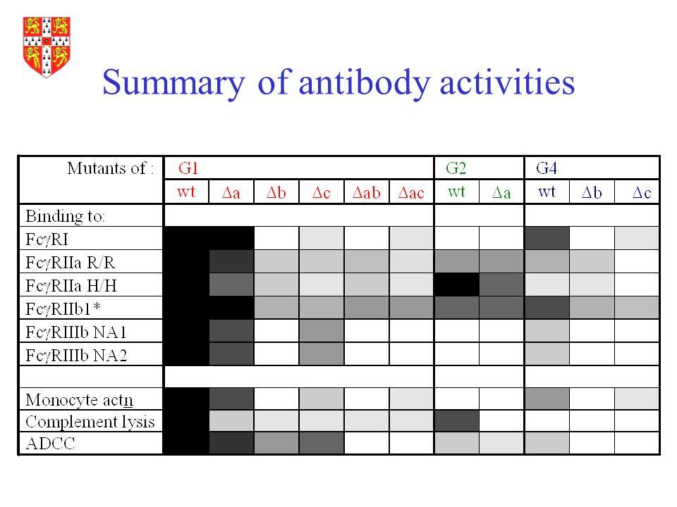 Summary of antibody activities