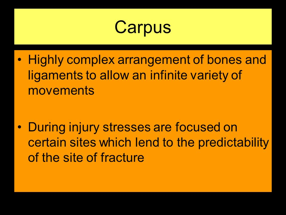 Carpus Highly complex arrangement of bones and ligaments to allow an infinite variety of movements During injury stresses are focused on certain sites