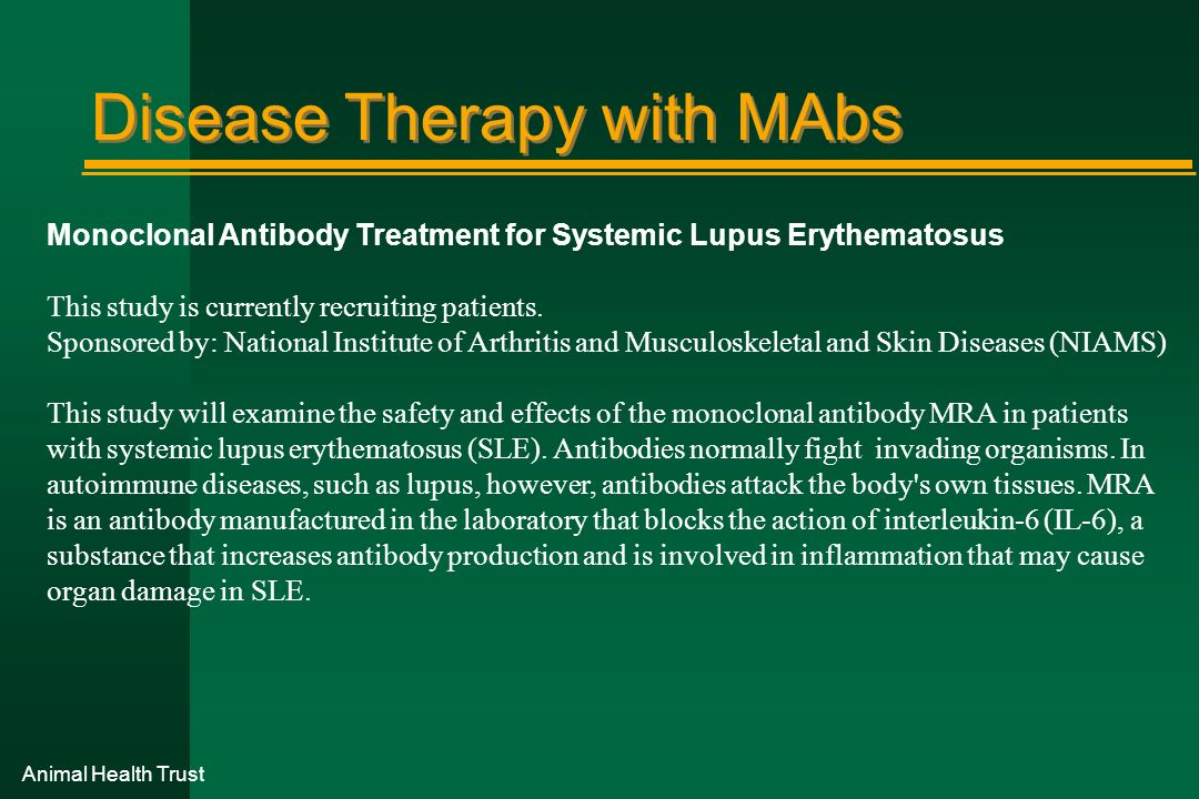 Animal Health Trust Disease Therapy with MAbs Monoclonal Antibody Treatment for Systemic Lupus Erythematosus This study is currently recruiting patien
