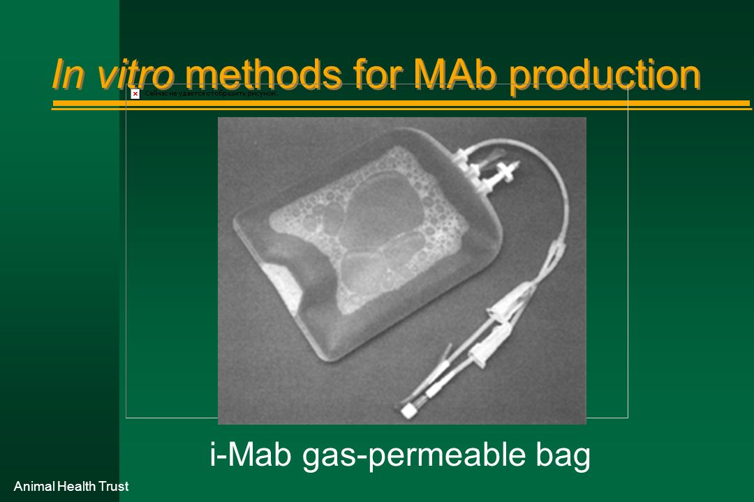 Animal Health Trust In vitro methods for MAb production i-Mab gas-permeable bag