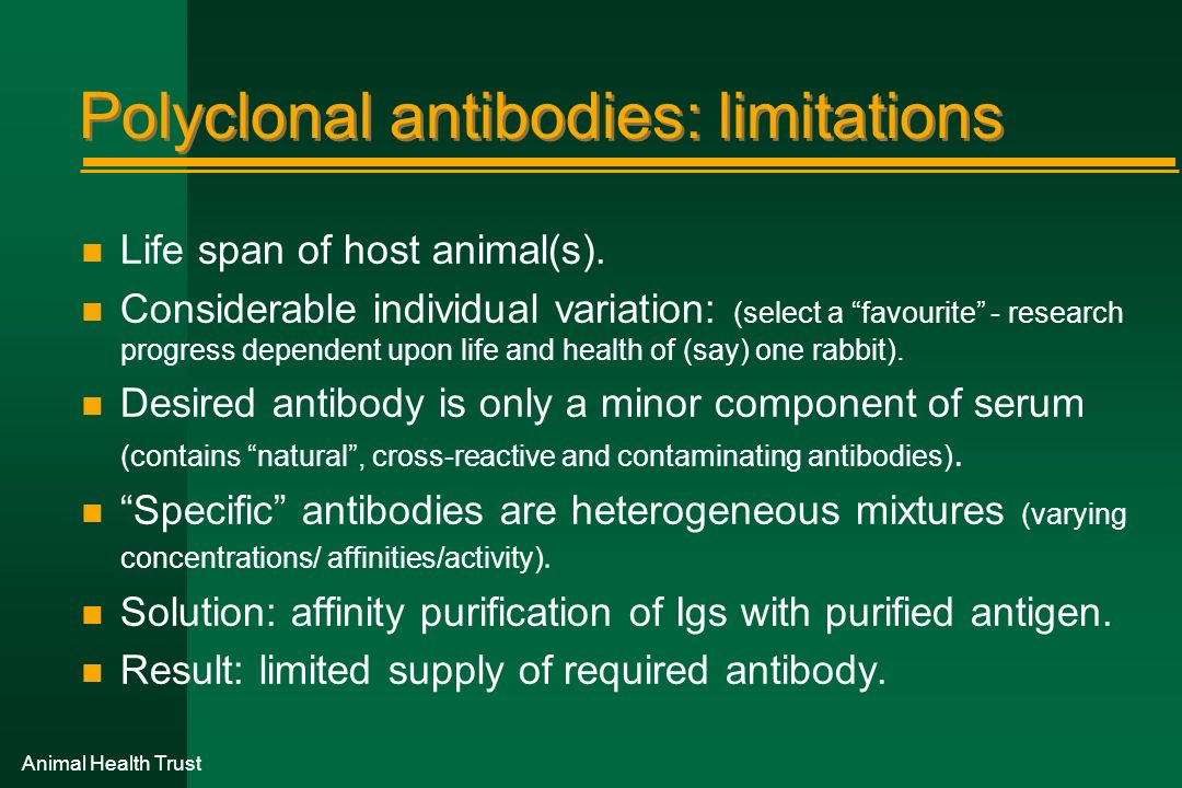 Animal Health Trust Polyclonal antibodies: limitations n Life span of host animal(s). n Considerable individual variation: (select a favourite - resea