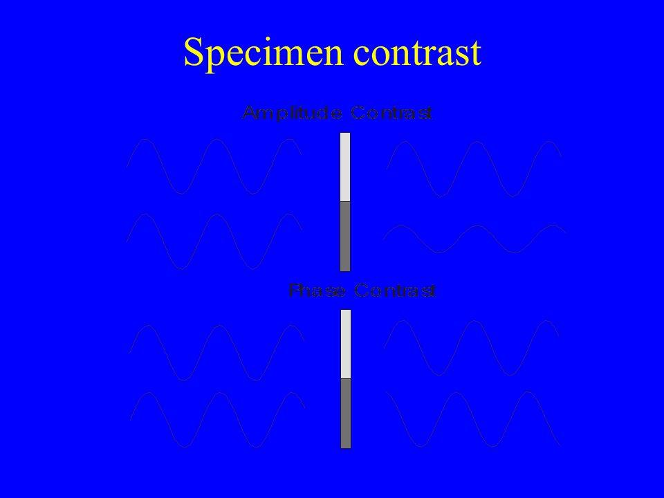 Specimen contrast