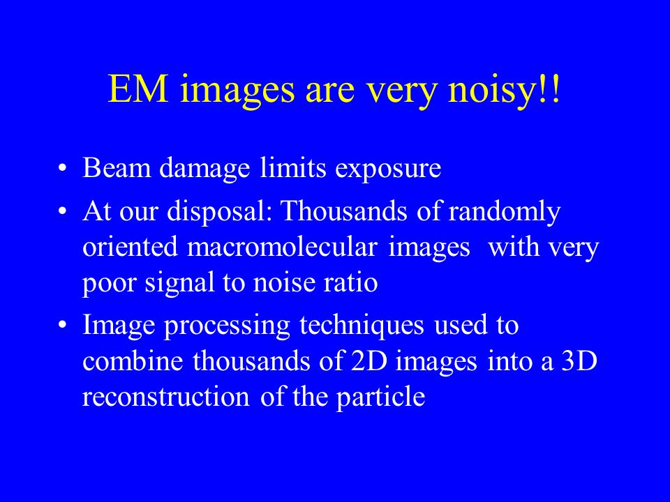 EM images are very noisy!.