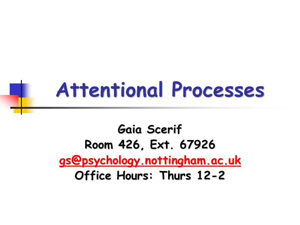Attentional Processes Gaia Scerif Room 426, Ext.