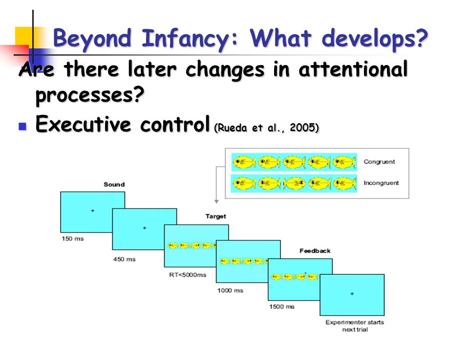 Beyond Infancy: What develops. Are there later changes in attentional processes.