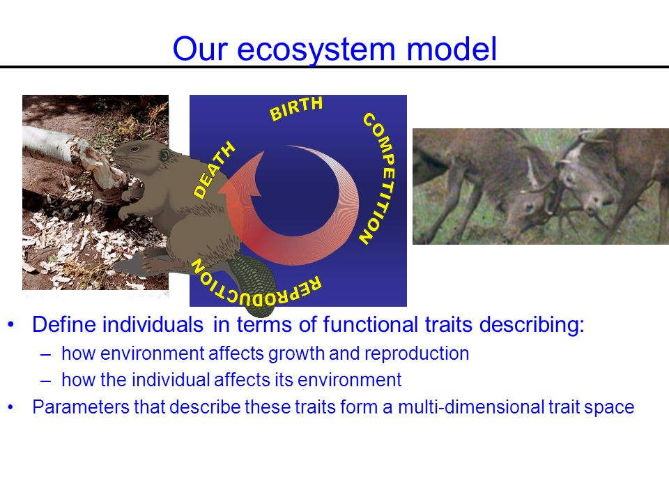 Our ecosystem model Define individuals in terms of functional traits describing: –how environment affects growth and reproduction –how the individual affects its environment Parameters that describe these traits form a multi-dimensional trait space