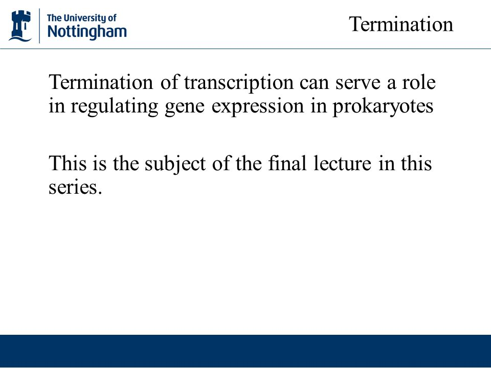 Termination of transcription can serve a role in regulating gene expression in prokaryotes This is the subject of the final lecture in this series. Te