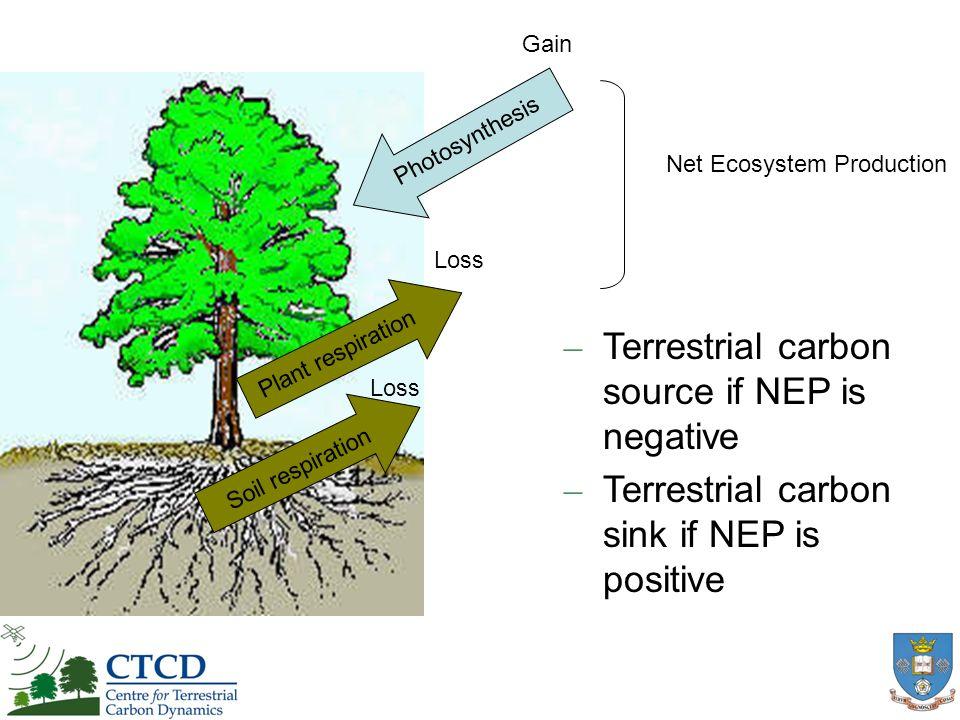 Leaf life span 69.1% Minimum growth rate 14.2% Water potential 3.4% Maximum age 1.0%