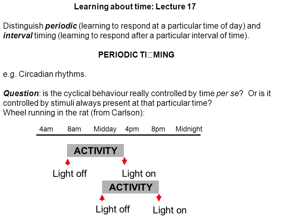 Learning about time: Lecture 17 Distinguish periodic (learning to respond at a particular time of day) and interval timing (learning to respond after