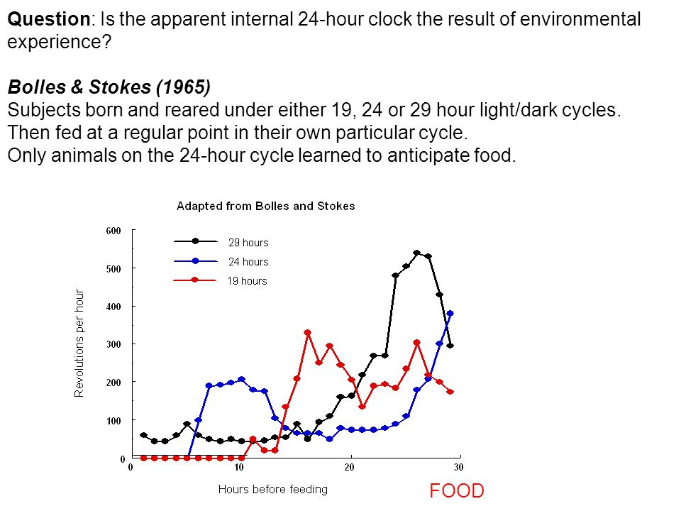 Question: Is the apparent internal 24-hour clock the result of environmental experience? Bolles & Stokes (1965) Subjects born and reared under either