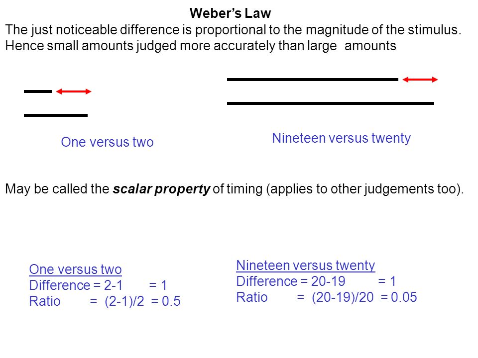 Webers Law The just noticeable difference is proportional to the magnitude of the stimulus.