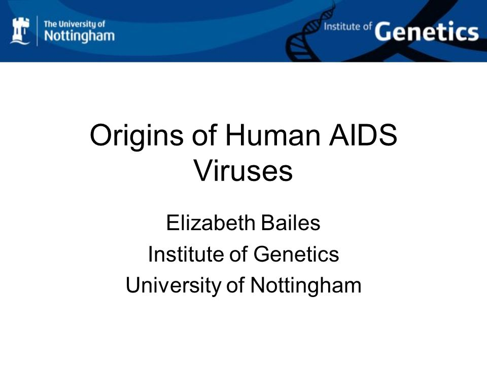 Did HIV-1 come from chimpanzees.