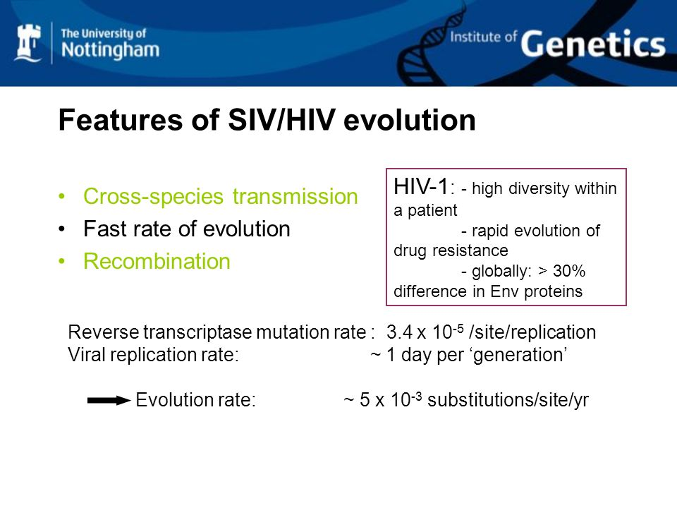 Features of SIV/HIV evolution Cross-species transmission Fast rate of evolution Recombination Reverse transcriptase mutation rate : 3.4 x 10 -5 /site/replication Viral replication rate: ~ 1 day per generation Evolution rate: ~ 5 x 10 -3 substitutions/site/yr HIV-1 : - high diversity within a patient - rapid evolution of drug resistance - globally: > 30% difference in Env proteins