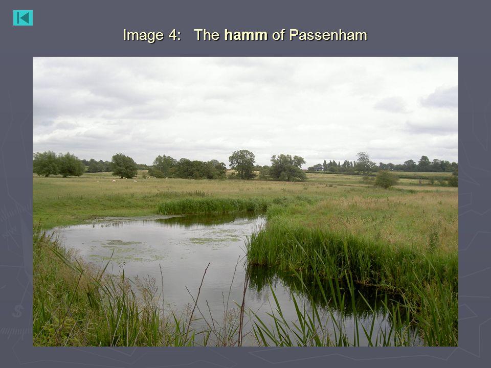 Image 4: The hamm of Passenham