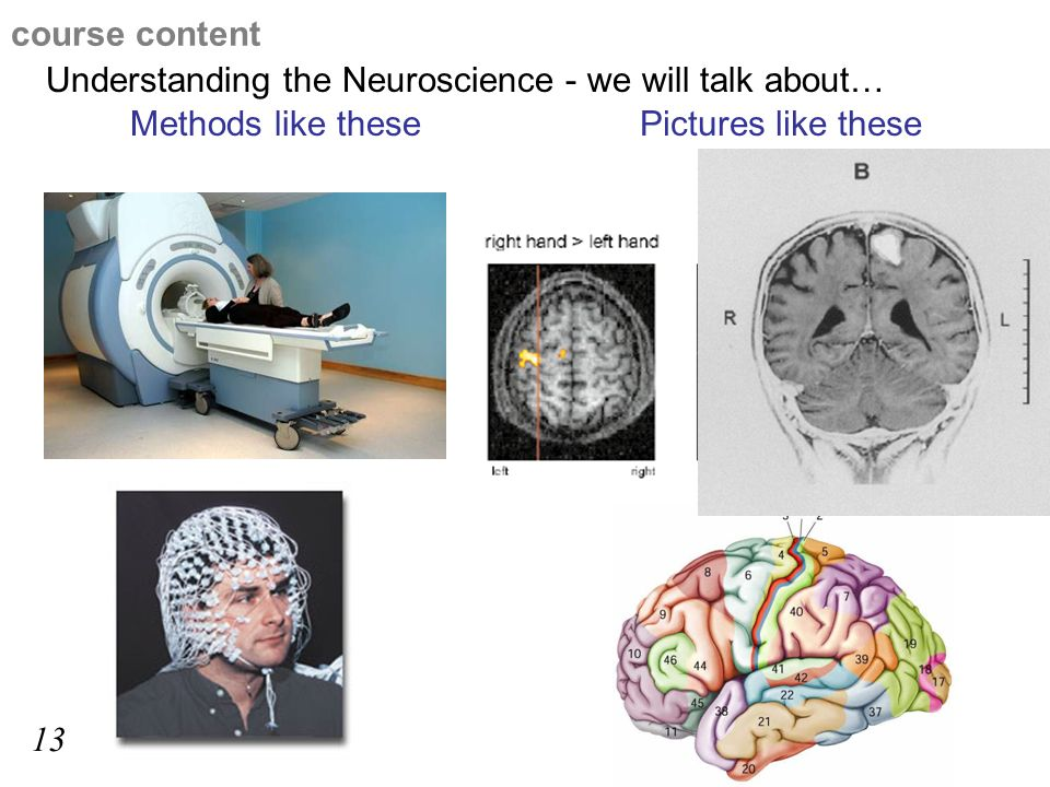 Understanding the Neuroscience - we will talk about… Methods like thesePictures like these course content 13