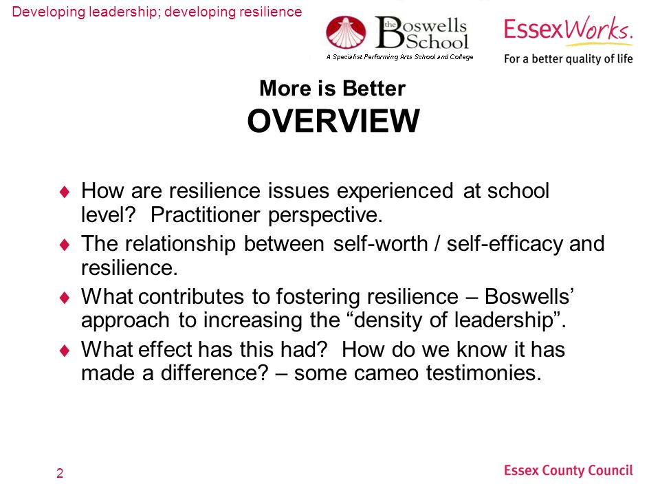 Developing leadership; developing resilience 2 More is Better OVERVIEW How are resilience issues experienced at school level? Practitioner perspective