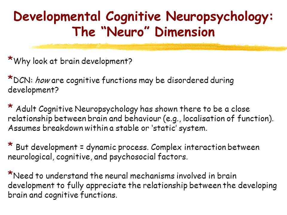 Developmental Cognitive Neuropsychology: The Neuro Dimension * Key aspects of CNS development for DCN: 1.Is there a relationship between changes in brain structure/function and cognitive development.