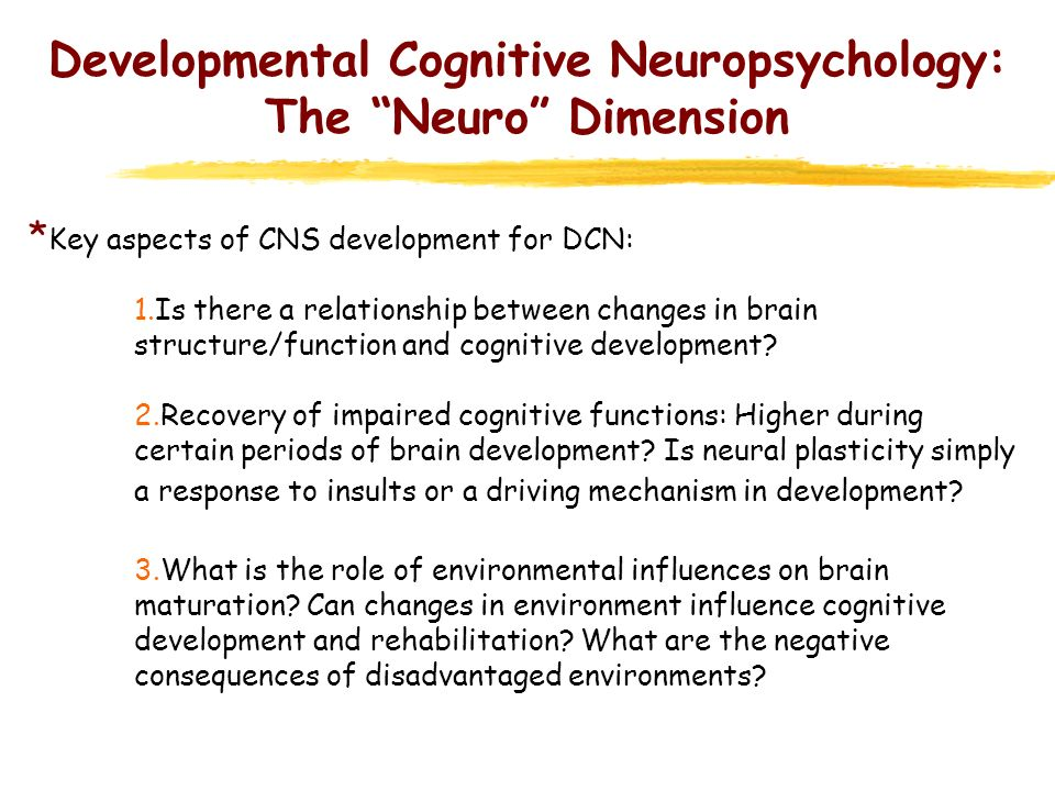 Developmental Cognitive Neuropsychology: The Neuro Dimension * Key aspects of CNS development for DCN: 1.Is there a relationship between changes in br