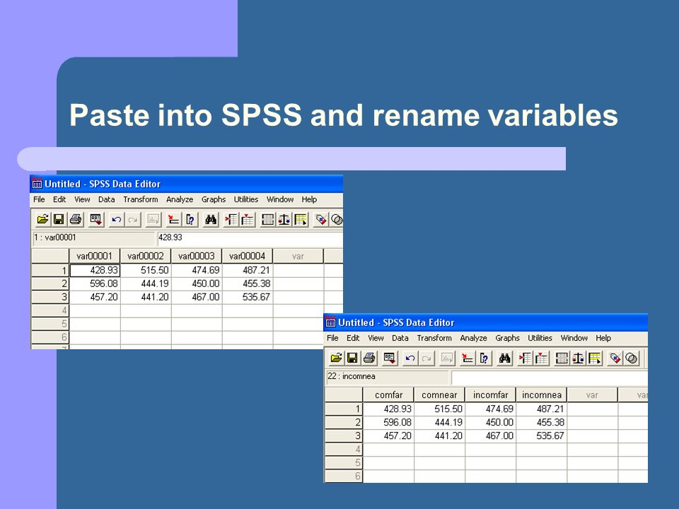 19 Paste into SPSS and rename variables