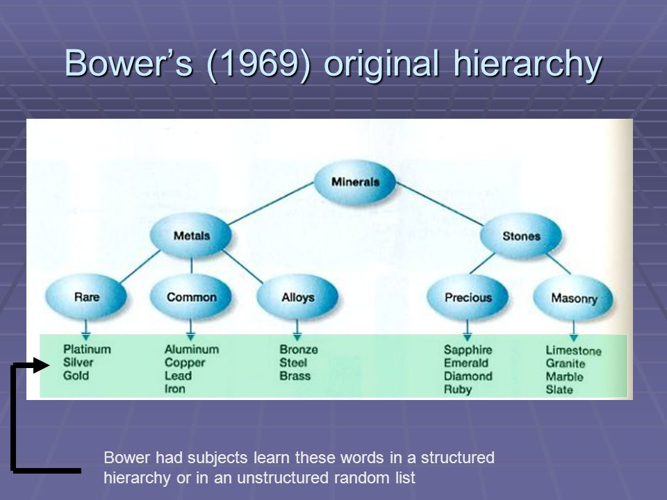 Bowers (1969) original hierarchy Bower had subjects learn these words in a structured hierarchy or in an unstructured random list