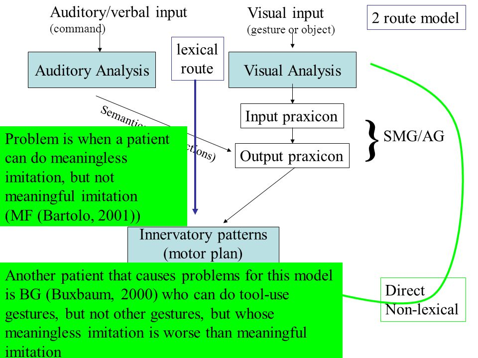 Direct Non-lexical Output praxicon 2 route model Semantics (learnt actions) } SMG/AG Auditory Analysis Auditory/verbal input (command) Innervatory pat