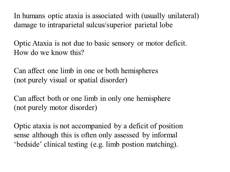 In humans optic ataxia is associated with (usually unilateral) damage to intraparietal sulcus/superior parietal lobe Optic Ataxia is not due to basic
