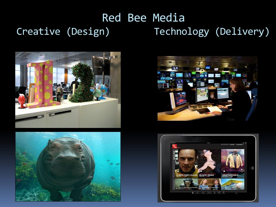 Red Bee Media Creative (Design) Technology (Delivery)