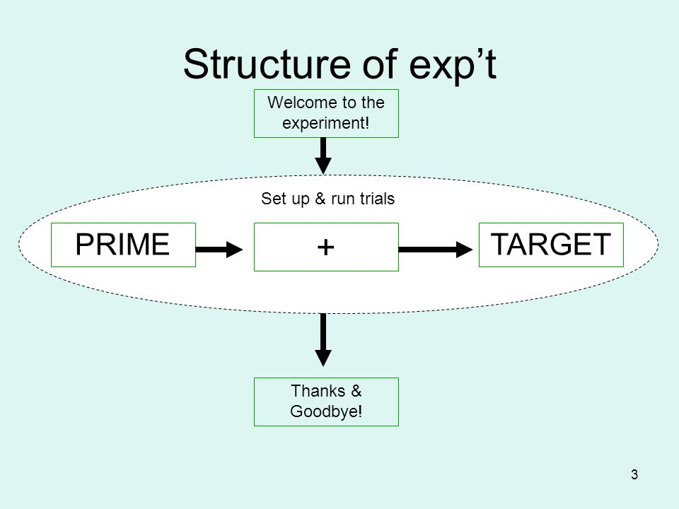 3 Structure of expt Welcome to the experiment! Thanks & Goodbye! PRIMETARGET + Set up & run trials