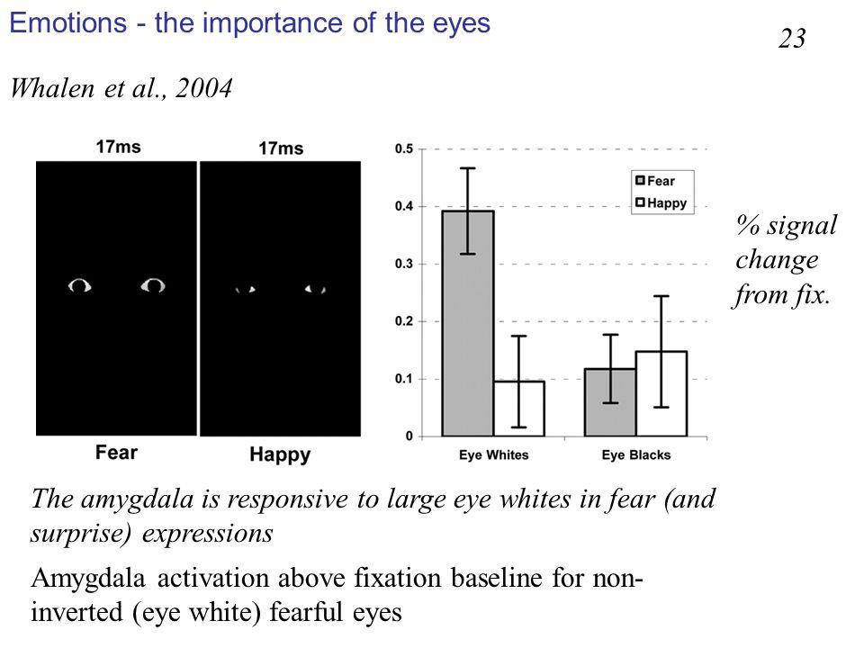 Whalen et al., 2004 Amygdala activation above fixation baseline for non- inverted (eye white) fearful eyes 23 The amygdala is responsive to large eye