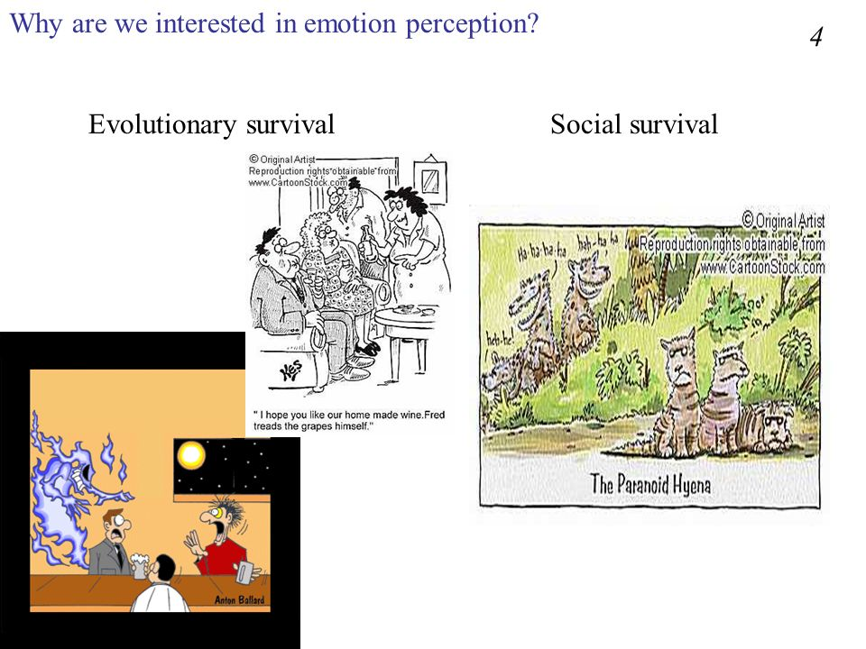 Why are we interested in emotion perception? Evolutionary survivalSocial survival 4