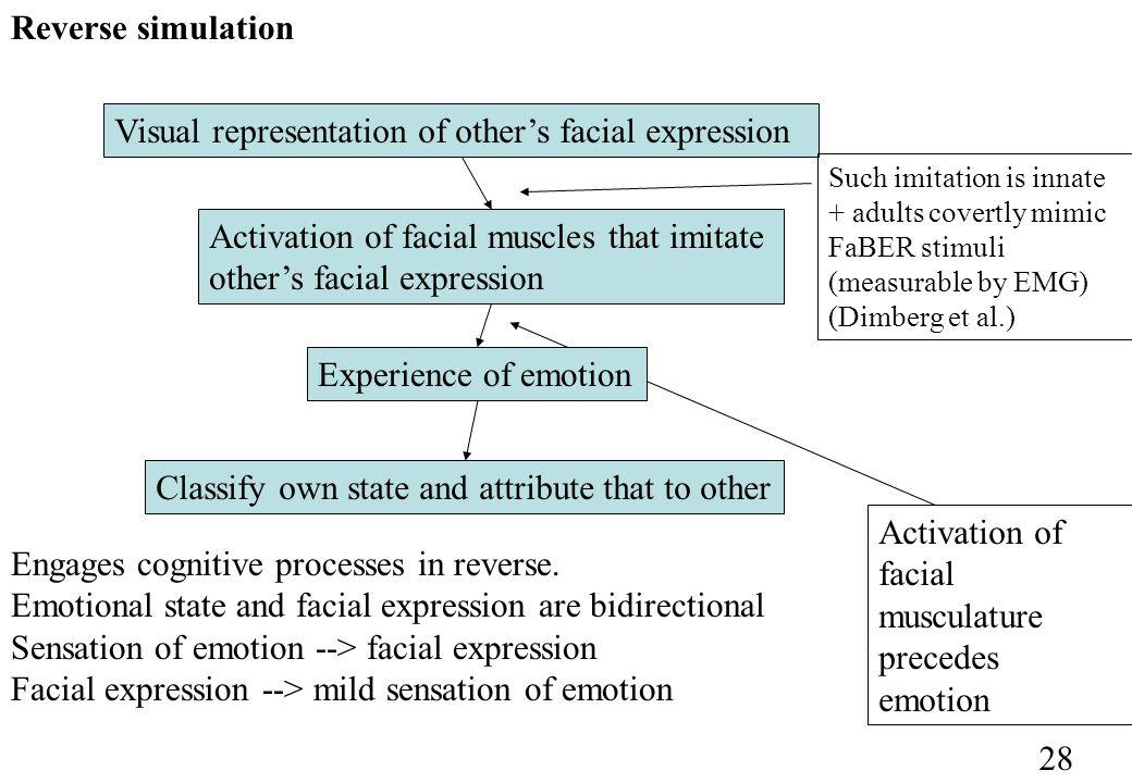 Activation of facial musculature precedes emotion Reverse simulation 28 Visual representation of others facial expression Activation of facial muscles