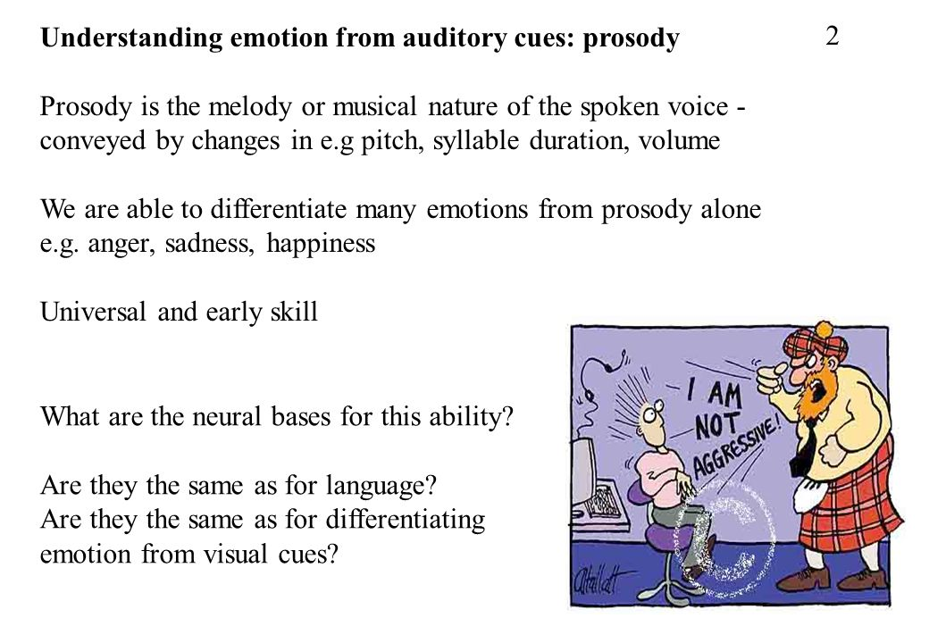 Understanding emotion from auditory cues: prosody Prosody is the melody or musical nature of the spoken voice - conveyed by changes in e.g pitch, syll