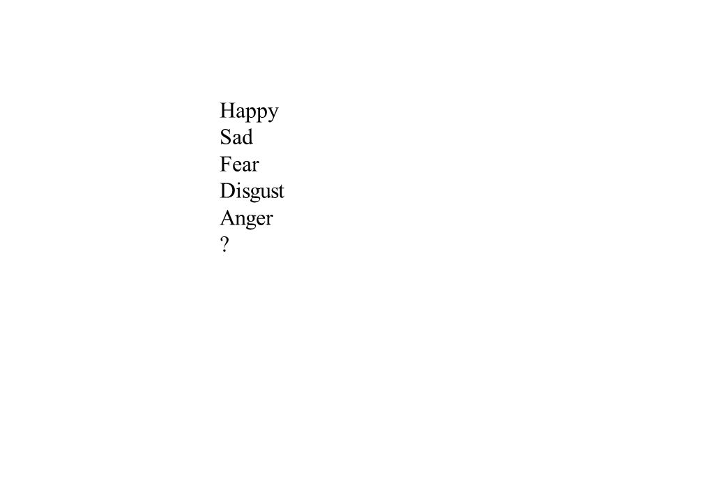 Happy Sad Fear Disgust Anger ?