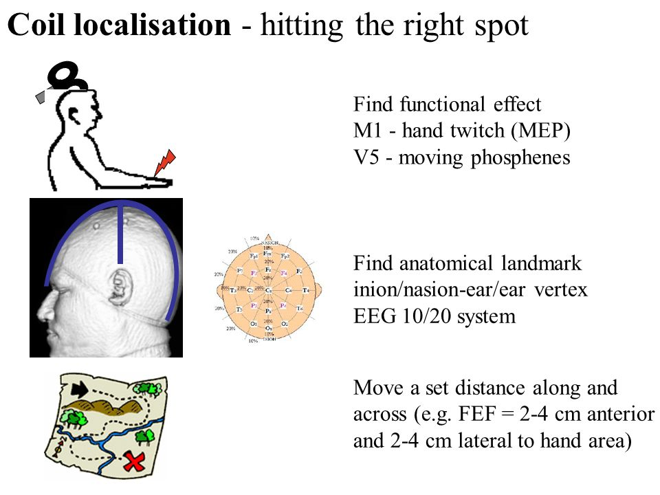 Find anatomical landmark inion/nasion-ear/ear vertex EEG 10/20 system Coil localisation - hitting the right spot Move a set distance along and across