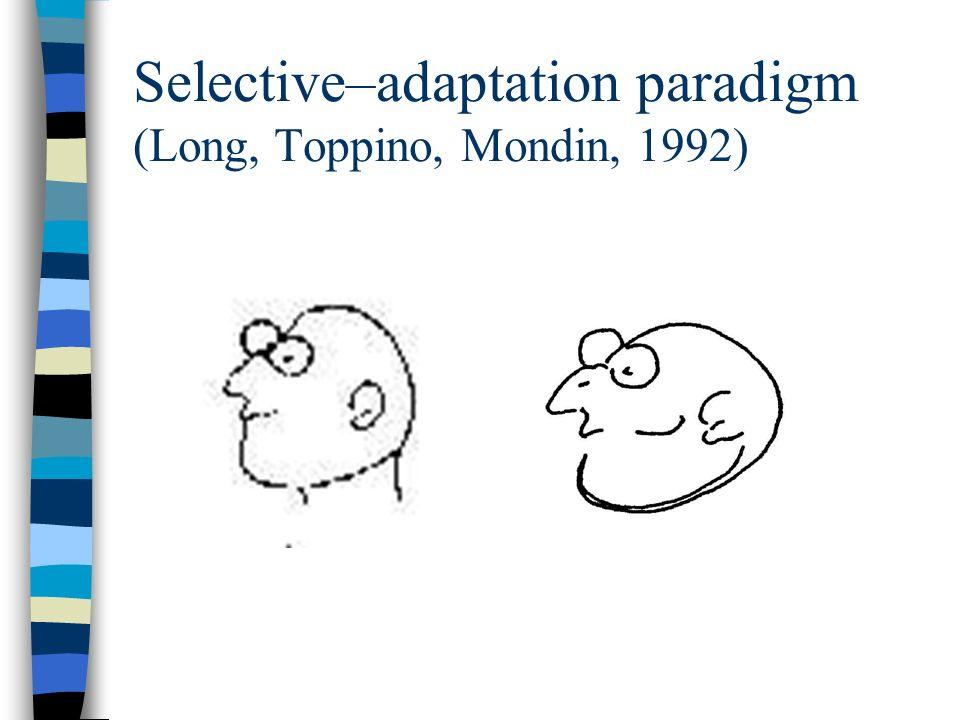 Selective–adaptation paradigm (Long, Toppino, Mondin, 1992)