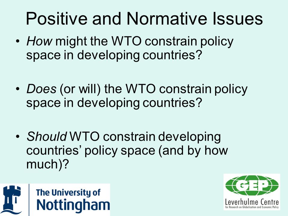 Positive and Normative Issues How might the WTO constrain policy space in developing countries? Does (or will) the WTO constrain policy space in devel