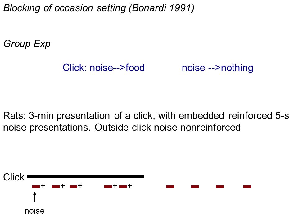Blocking of occasion setting (Bonardi 1991) Group Exp Click: noise-->food noise -->nothing Rats: 3-min presentation of a click, with embedded reinforced 5-s noise presentations.