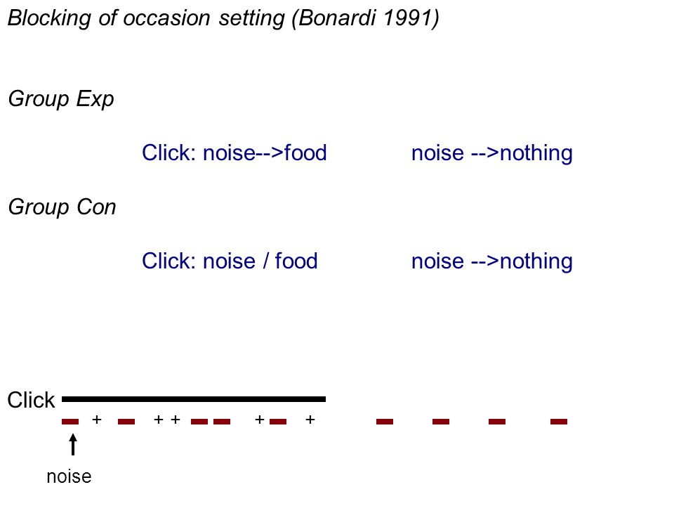 Blocking of occasion setting (Bonardi 1991) Group Exp Click: noise-->food noise -->nothing Group Con Click: noise / food noise -->nothing Click noise +++++