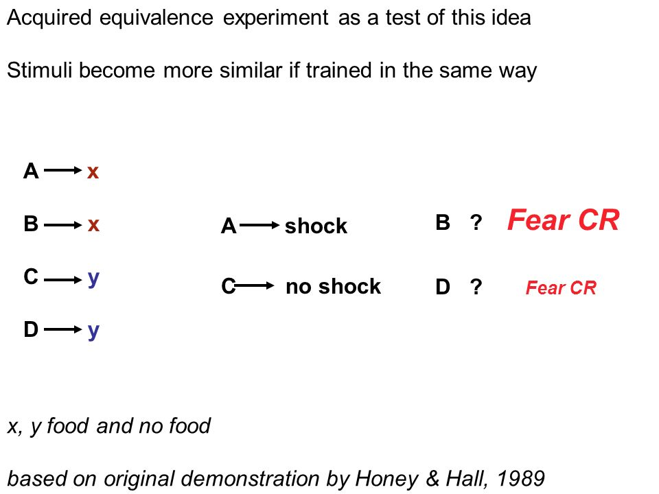 A x B x C y D y C no shock A shock D . Fear CR B .