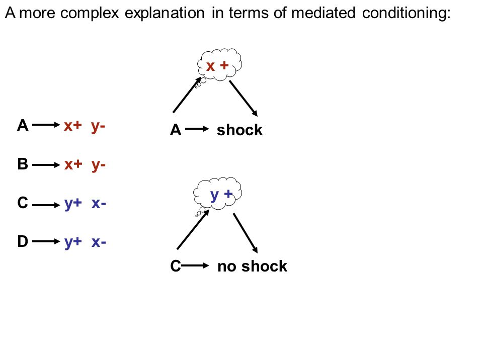 y + C no shock A shock x + A x+ y- B x+ y- C y+ x- D y+ x- A more complex explanation in terms of mediated conditioning: