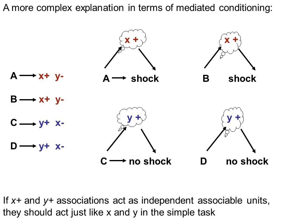 y + C no shock A shock x + y + D no shock B shock x + A x+ y- B x+ y- C y+ x- D y+ x- A more complex explanation in terms of mediated conditioning: If x+ and y+ associations act as independent associable units, they should act just like x and y in the simple task