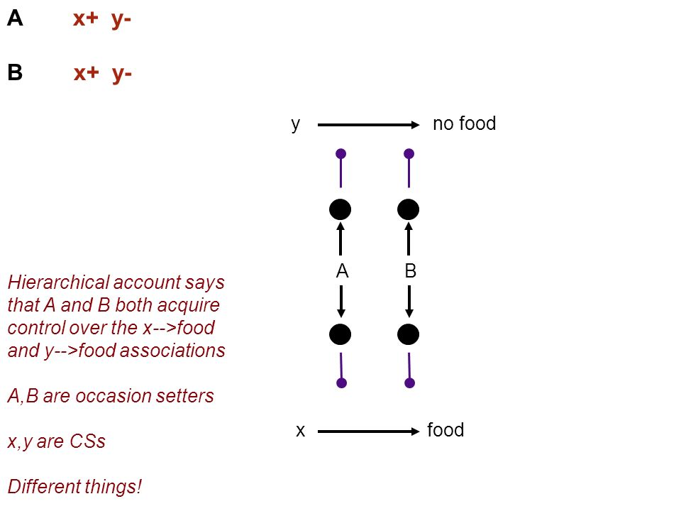 A x+ y- B x+ y- food A x no foody B Hierarchical account says that A and B both acquire control over the x-->food and y-->food associations A,B are occasion setters x,y are CSs Different things!