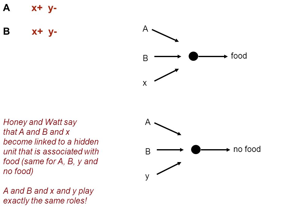 A x+ y- B x+ y- food A x B Honey and Watt say that A and B and x become linked to a hidden unit that is associated with food (same for A, B, y and no food) A and B and x and y play exactly the same roles.