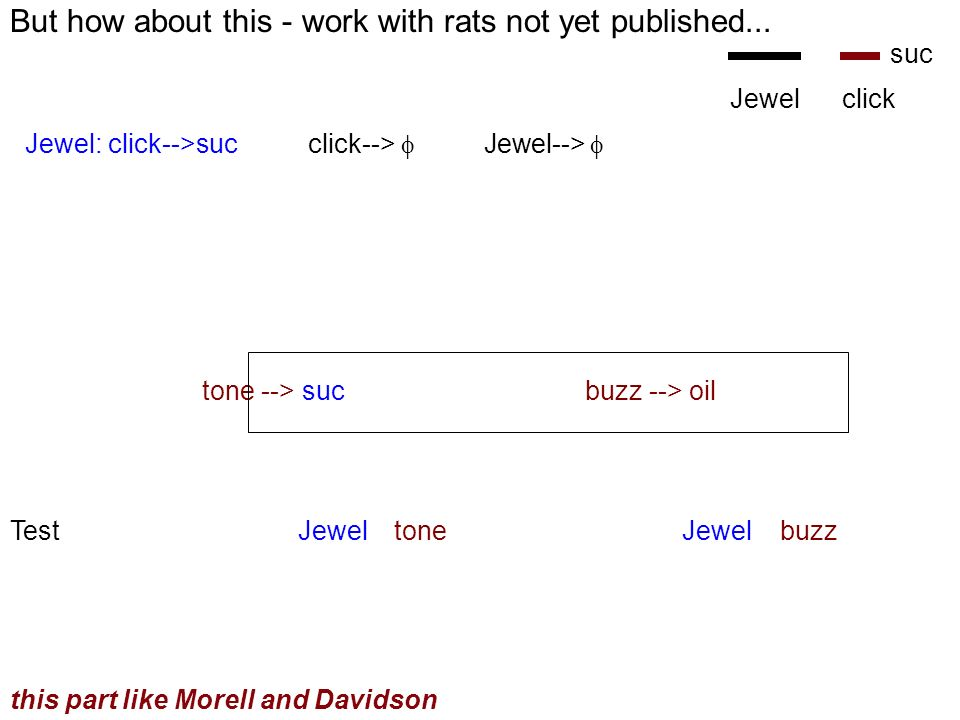 But how about this - work with rats not yet published...