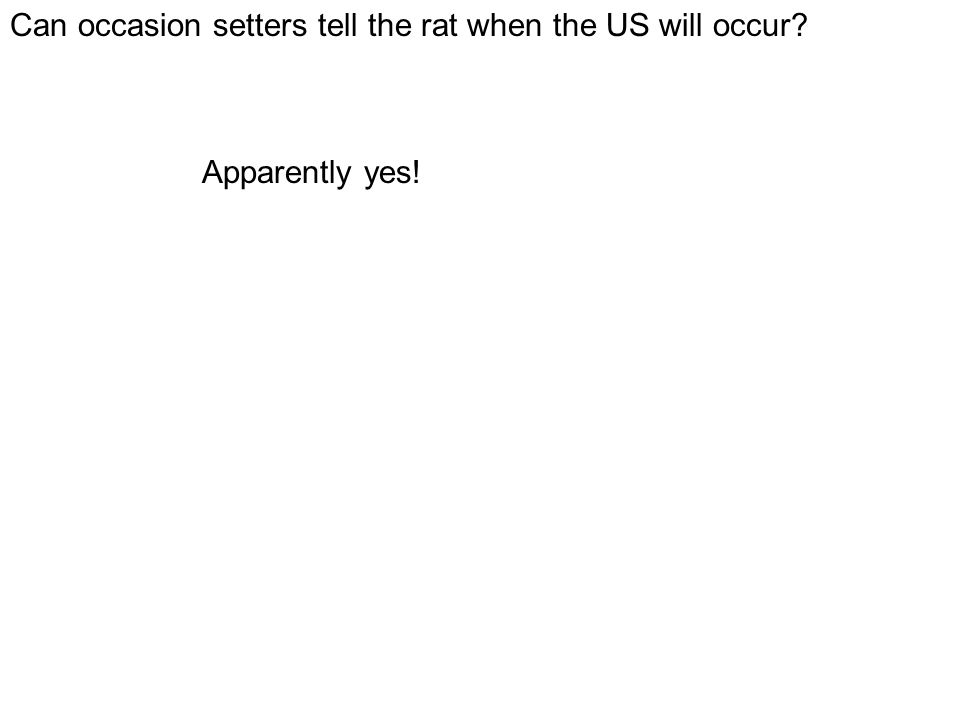 Can occasion setters tell the rat when the US will occur? Apparently yes!