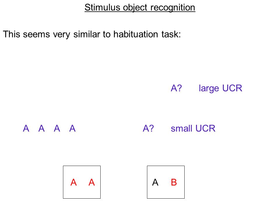 Stimulus object recognition This seems very similar to habituation task: A.
