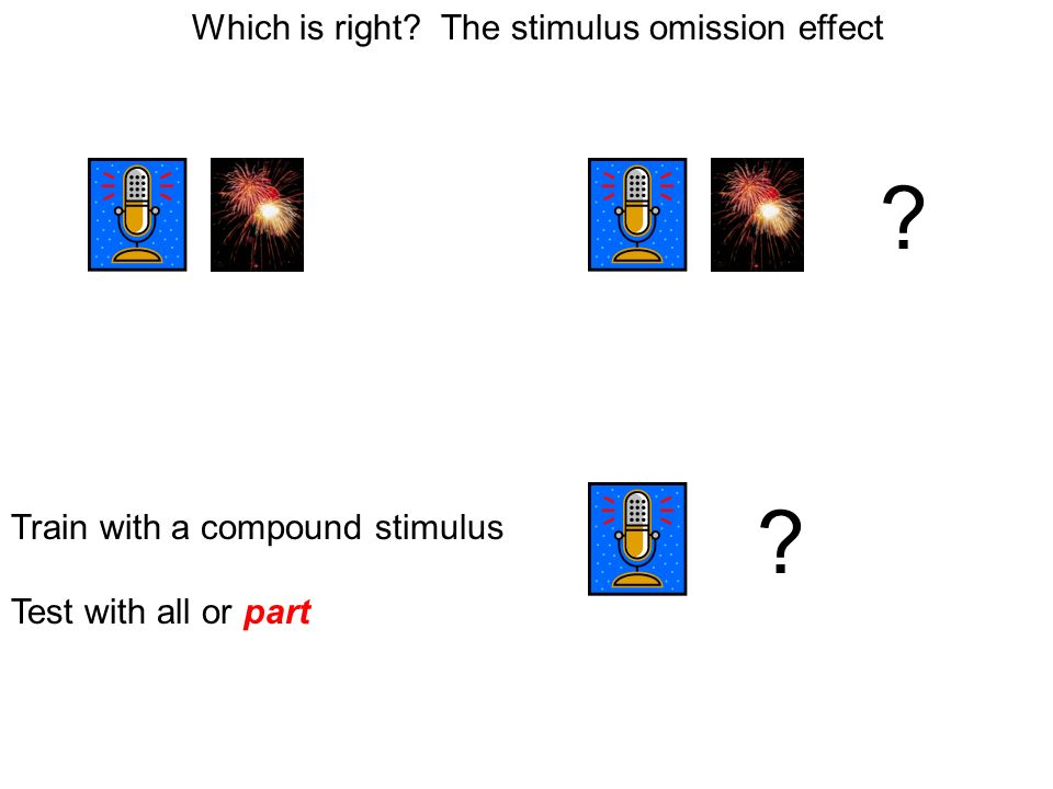 Which is right. The stimulus omission effect Train with a compound stimulus Test with all or part .