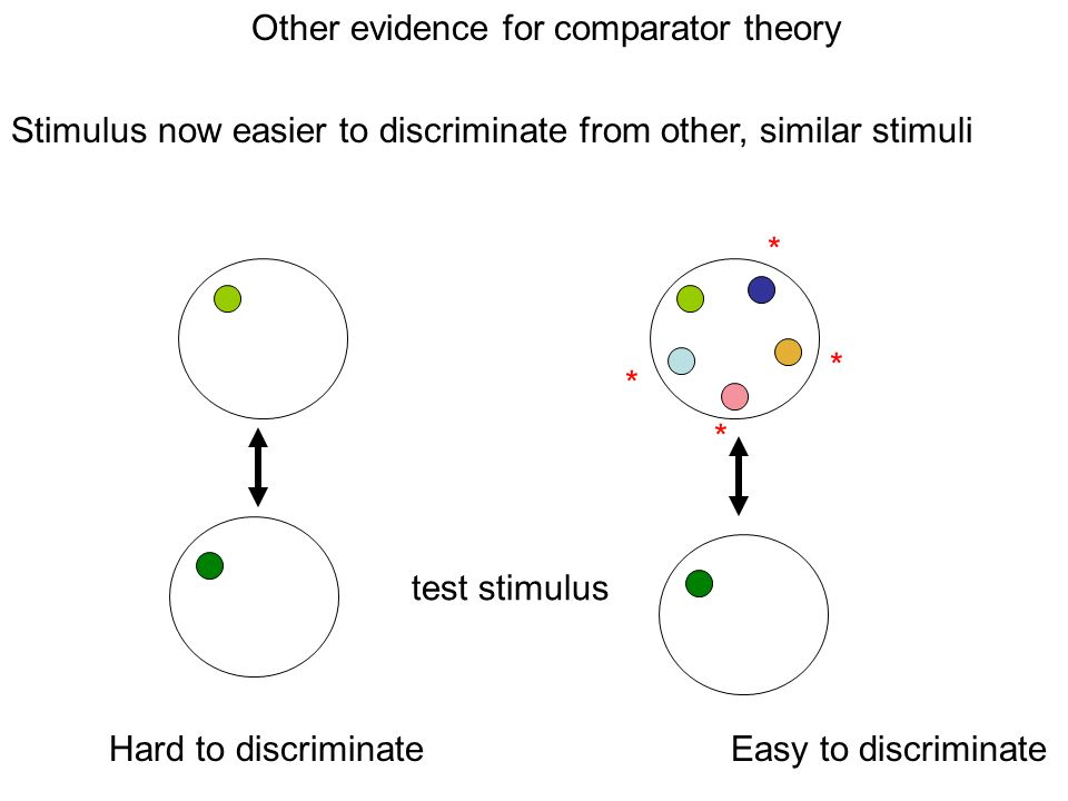 Other evidence for comparator theory test stimulus Hard to discriminate Easy to discriminate Stimulus now easier to discriminate from other, similar stimuli * * * *