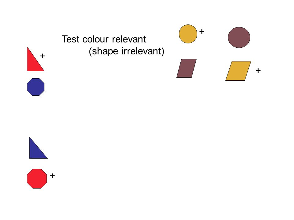 + + + + Test colour relevant (shape irrelevant)