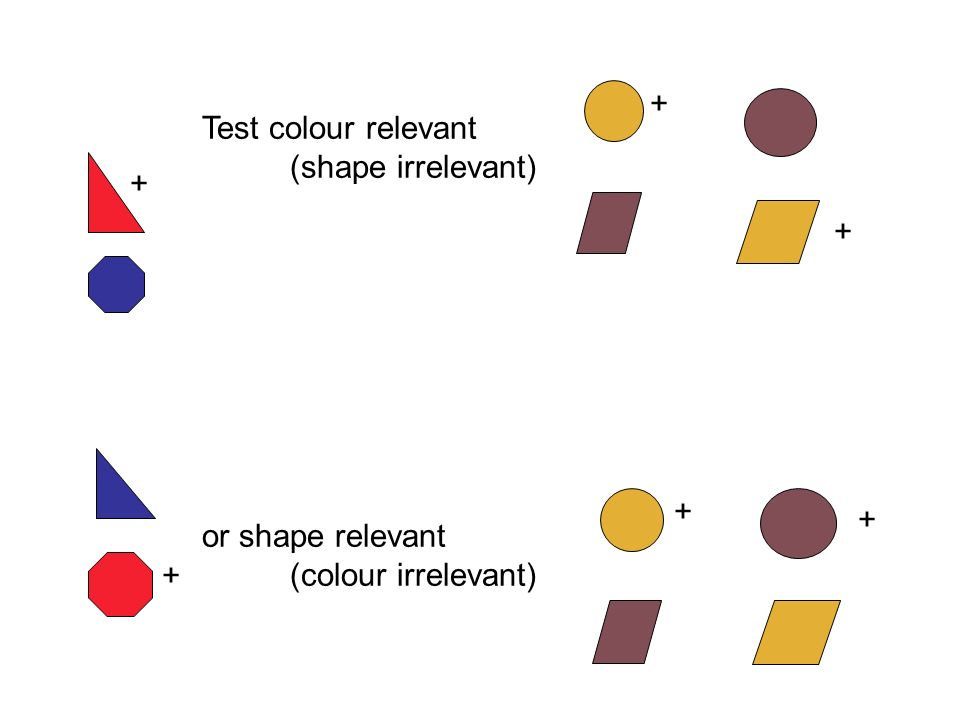 + + + + + + Test colour relevant (shape irrelevant) or shape relevant (colour irrelevant)
